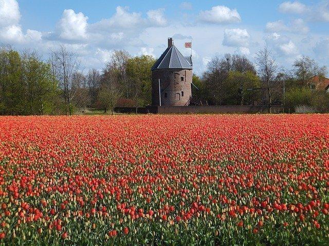 Knooppuntenroute Zuid-Holland