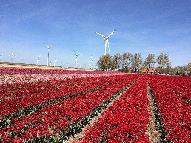 knooppuntroutes in Flevoland